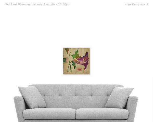 schilderij bloemenanatomie amaryllis