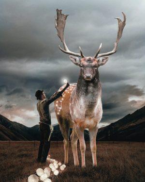 schilderij christmas deer