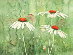 schilderij echinacea two