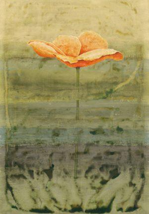 schilderij papaver