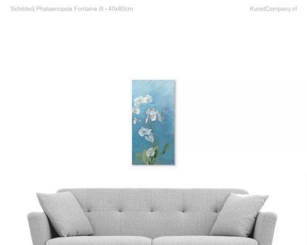 schilderij phalaenopsis fontaine iii