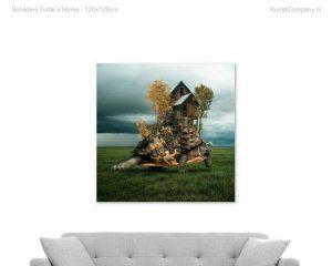 schilderij turtle s home