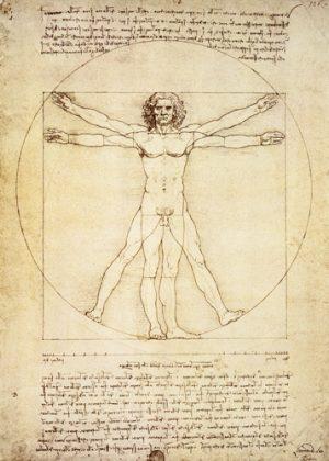 schilderij vitruvian man