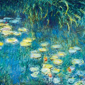 schilderij waterlelies ii